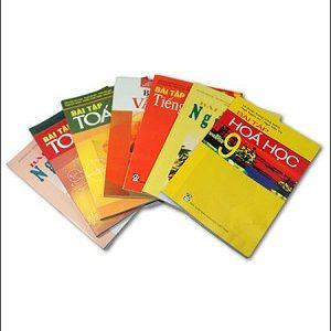 Bộ Sách Giáo Khoa Lớp 9 Bài Tập